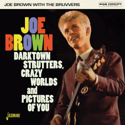 Joe BROWN with The BRUVVERS...